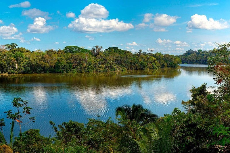 Tambopata Research Center Tour