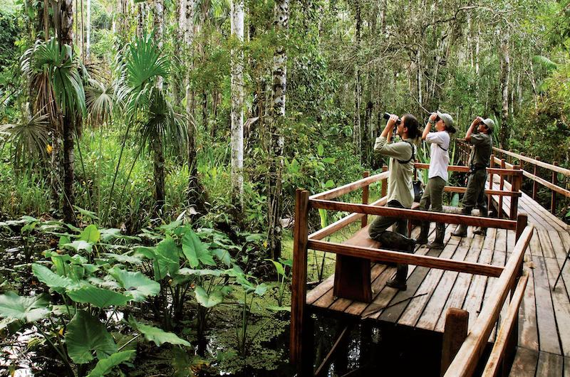 Refugio Amazonas Tour